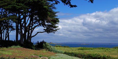 Que faut-il visiter sur l'île-de-Ré ? Découvrez toutes nos idées !