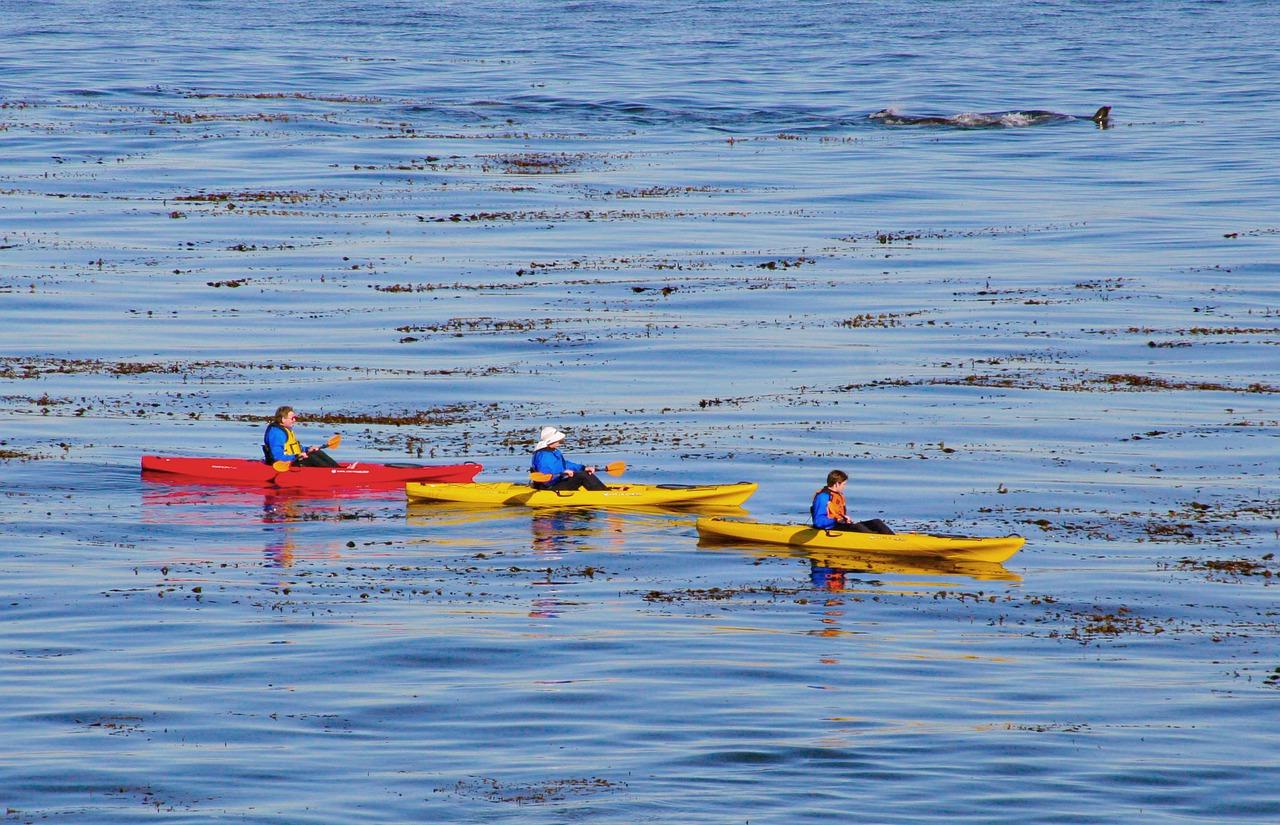 Commencer le kayak : comment s'équiper ?