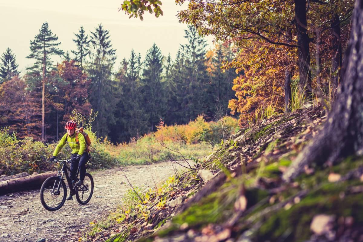 Point sur le vélo de route et le VTT